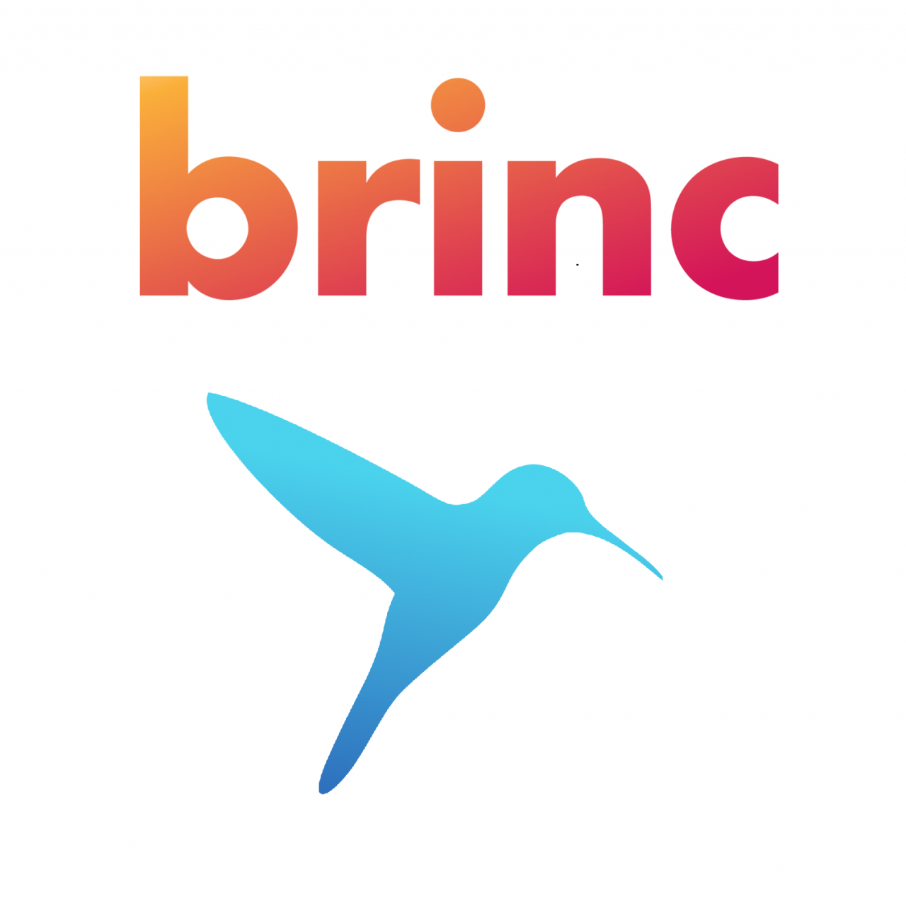 https://diaven.de/wp-content/uploads/2019/12/brinc_logo_final1-1-1280x1277.png
